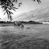 Tunceli, Munzur Irmağı, 1978