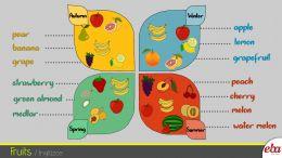 Bu infografikte 2. sınıf 9. ünite Fruits ele alınmıştır.
