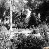 Osmaniye Parktan Bir Görünüm