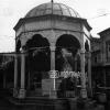 Bartın, 1977