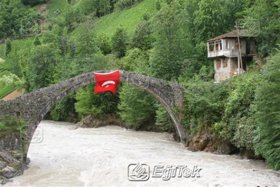 Timisvat Taş Kemer Köprü, 2007
