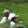 Çay Toplayanlar,  2007
