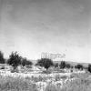 Konya, Karapınar, 1971