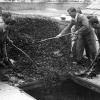 Kömürün depoya boşaltılması