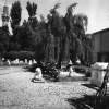 Konya, Arkeoloji Müzesi, 1971