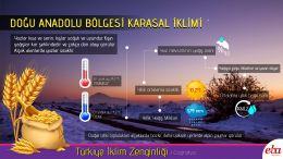 Türkiye'de görülen iklim tiplerinden Doğu Anadolu Karasal İklimi tanıtılmıştır.