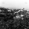 Muğla, 1982