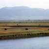 Muş Ovası ve Murat Nehri