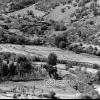 Ankara, Pirinç Tarlaları, 1976