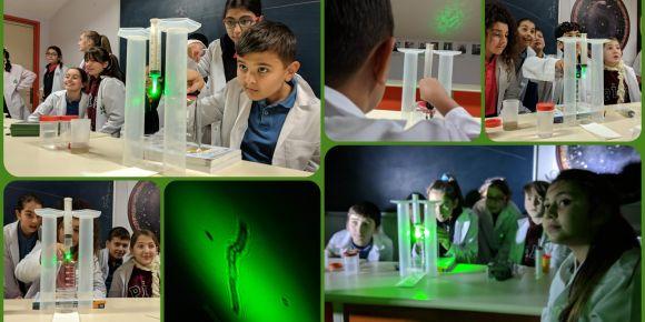 Lazer projeksiyon deneyi ile mikrokozmosu keşfediyorlar