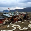 Balıkçı ağları ve tekneler