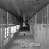Gazi Eğitim Enstitüsü, 1954
