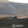 Ağrı Buğday Tarlasını Sürülmesi