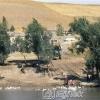 Ağrı Tutakve Murat Nehri