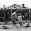 Bolu Deneme İlkokulu, 1963