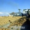 Sincan Şeker Fabrikası