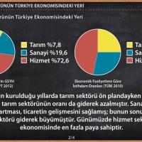 Hizmet Sektörünün Türkiye Ekonomisindeki Yeri