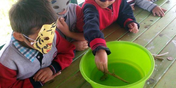 Suyun kaldırma kuvvetini öğreniyoruz
