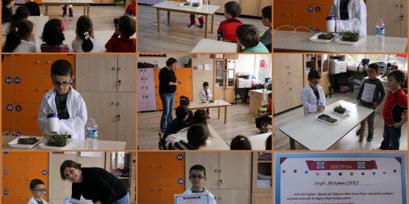 Ana Sınıfında Haftanın Bilim İnsanı Projesi
