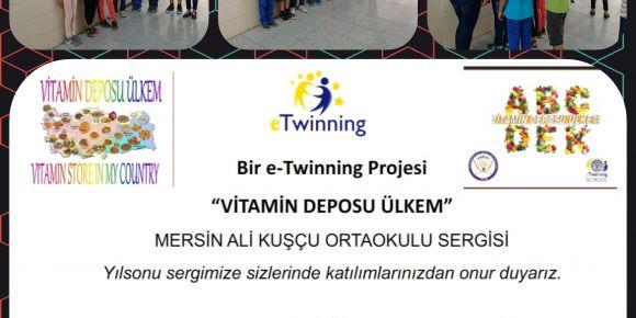 """""""Vitamin Deposu Ülkem"""" e-Twinning  projesi yıl sonu sergisi"""