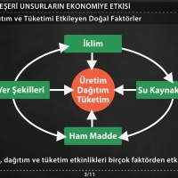 Doğal ve Beşeri Unsurların Ekonomiye Etkisi