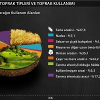 Türkiye'de Toprak Tipleri ve Toprak Kullanımı – Türkiye'de Toprağın Kullanım Alanları