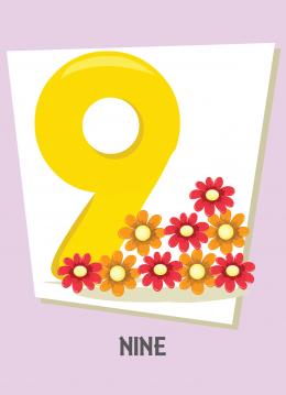 İngilizce sayılar resimlerle gösterilir.(9-Nine-Dokuz)
