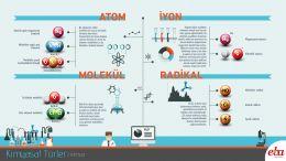 Kimyasal türler ile ilgili açıklamalar yer almaktadır.
