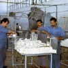 Muş, Süt Fabrikası, 1978