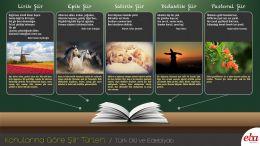 Konularına göre şiir türleri konusunda hazırlanmış infografik çalışma.