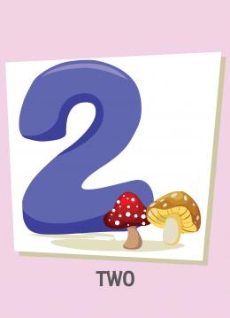 İngilizce sayılar resimlerle gösterilir.(2-Two-İki)