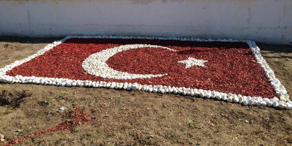 Antalya-Serik Serik İMKB Mesleki ve Teknik Anadolu Lisesi peyzaj çalışması