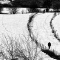 Doğada Kış Mevsimi