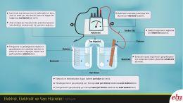 Bu infografikte bir elektrokimyasal hücrede yer alan elektrot, elektrolit, yarı hücre ve tuz köprüsü açıklanmaktadır.