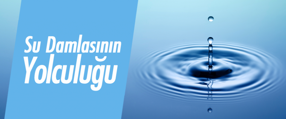 Su Damlasının Yolculuğu