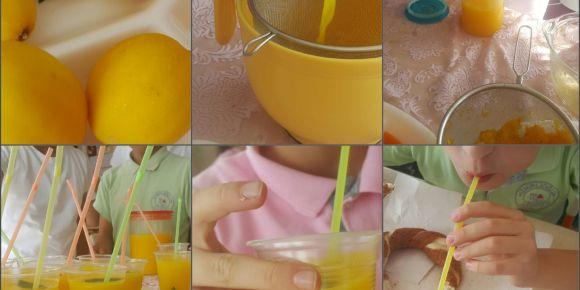 C Vitamini Deposu Limonata