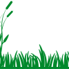 Arka Plan - Background - Çim - Grass