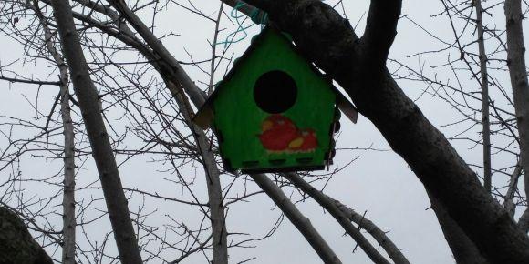 Sıcak bir yuva kuş evi