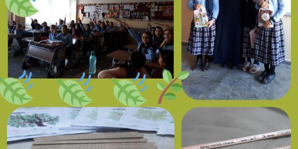 Yeşeren Ağaçlarımız , Yeşeren Kalemlerimiz
