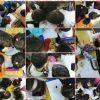 """"""" Masal Ağacı eTwinning Projesi """"  kapsamında öğrenciler masal yazdılar"""