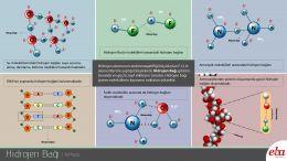 Hidrojen bağı ve özellikleri yer almaktadır.