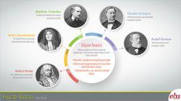 Hücre teorisinin tarihsel gelişimi anlatılmaktadır.