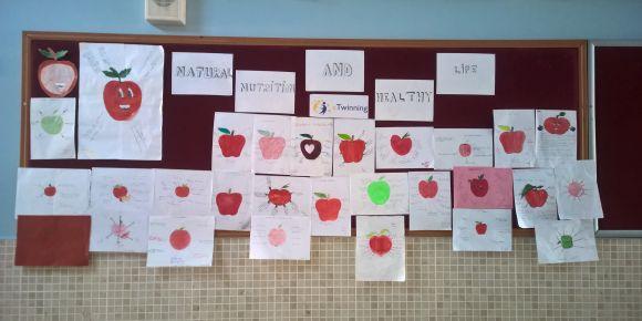 eTwinning projesi kapsamındaki elmanın faydaları ve vitaminleri çalışmamız