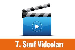 7. Sınıf Videoları
