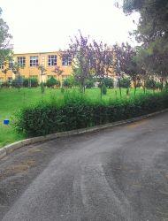 Necla Orhan İlkokulu ve Ortaokulu