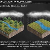 Ekolojik Döngülere İnsan Müdahaleleri - 2