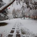 Şehirde Kış Mevsimi