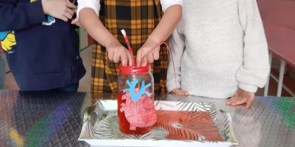 Öğrencilerimiz kanın nasıl pompalandığını öğrendi