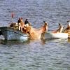 Denizde ağ çeken balıkçılar