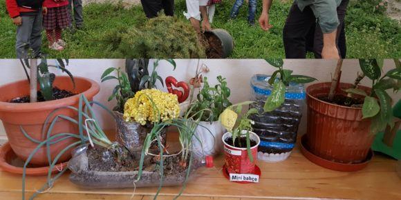 Miniklerin mini bahçesi  yeşerdi hatta bazı  sebzeler çıktı
